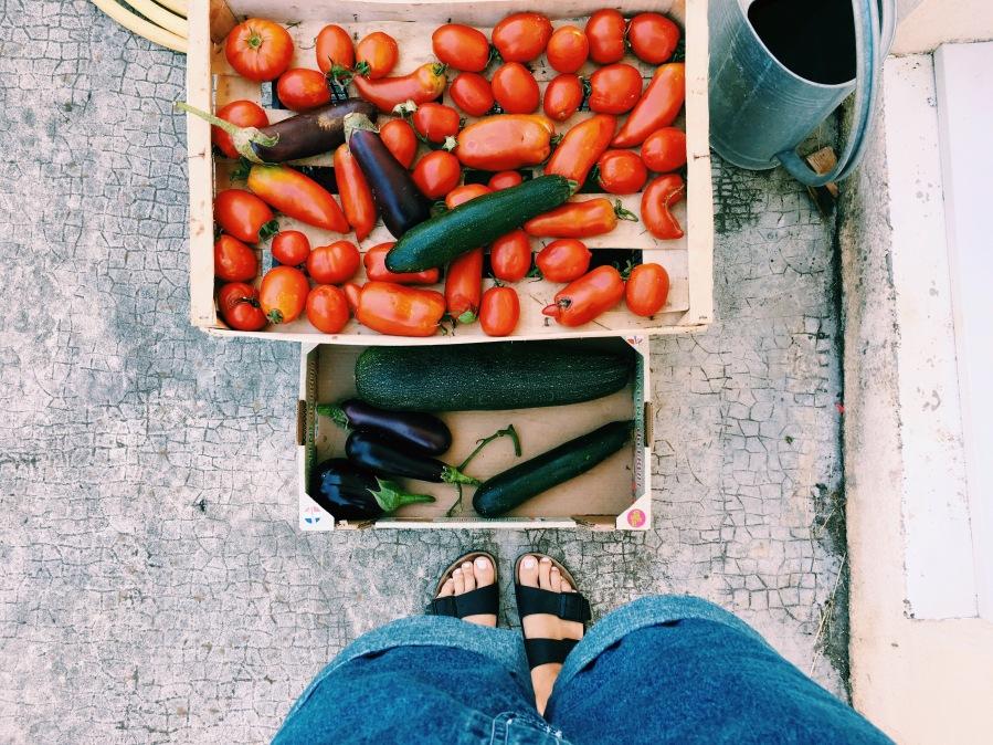 Zero waste series: zero waste basics when groceryshopping